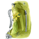 Deuter 14 SL moss-apple